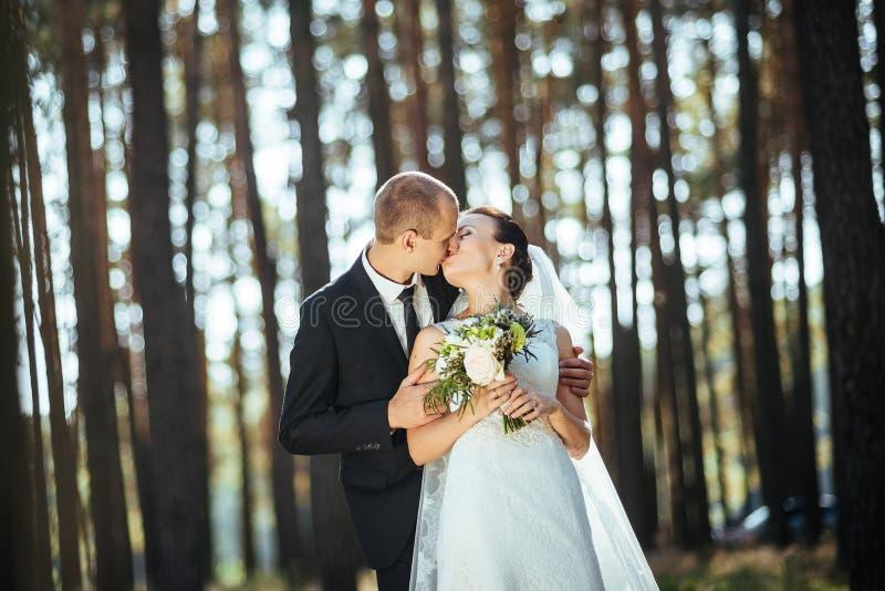Piękny lato ślubu spacer na naturze zdjęcia royalty free