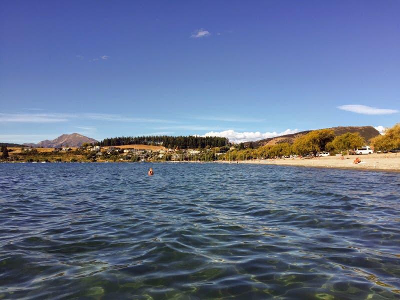 Piękny letni dzień w Wanace, Nowej Zelandii i dziewiczych wodach zatoki Roys Bay fotografia stock