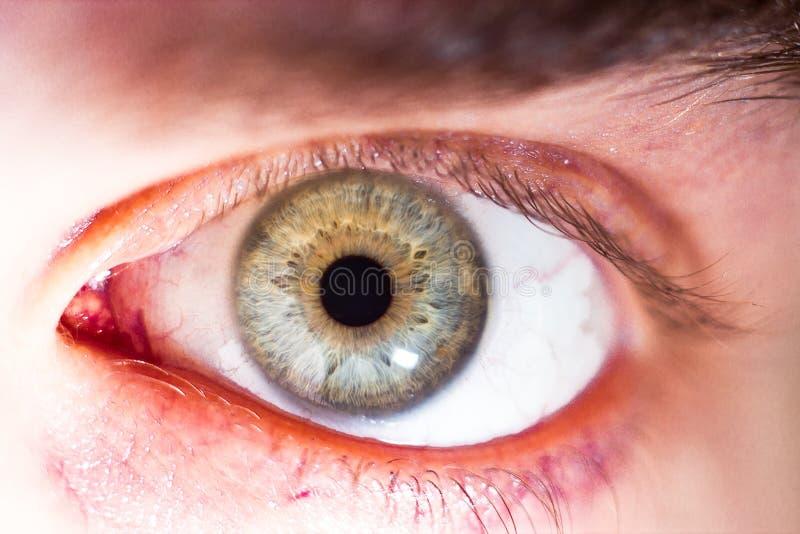 Piękny ludzki oko, makro-, zakończenie w górę błękitnego, żółty, brązowić, zielenieje, zdjęcia royalty free