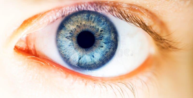 Piękny ludzki oko, makro-, zakończenie w górę błękitnego, żółty, brązowić, zielenieje, zdjęcie stock