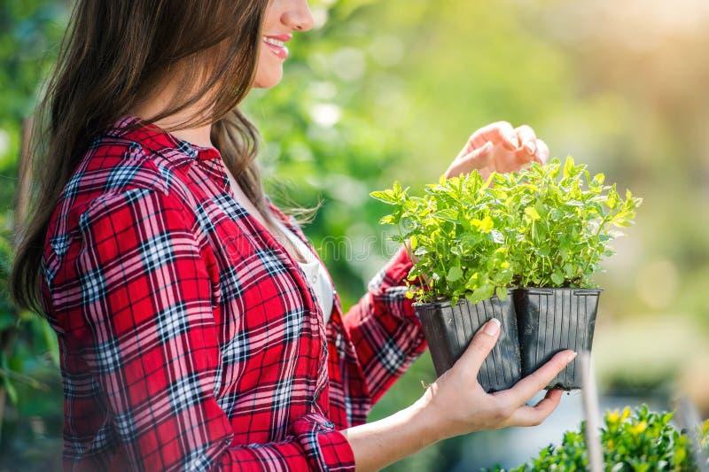 Download Piękny Młodej Kobiety Ogrodnictwo Obraz Stock - Obraz złożonej z liść, przygotowanie: 65226309