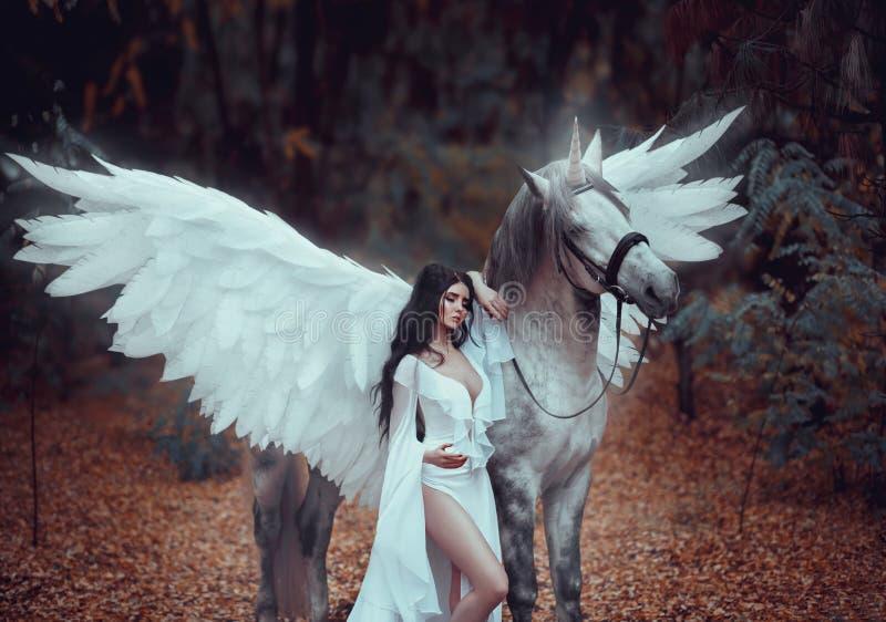 Piękny, młody elf, chodzi z jednorożec Jest ubranym nieprawdopodobnego światło, biel suknia Sztuki hotography zdjęcie stock