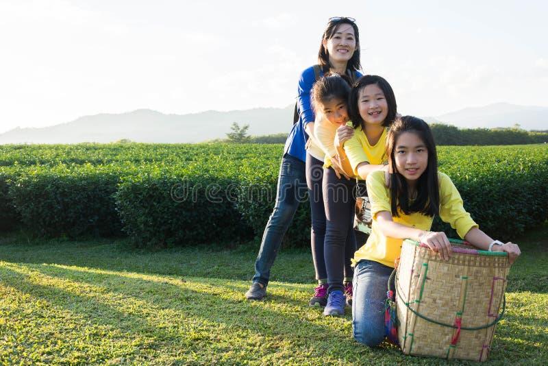 Piękny młody rodzinny portret plenerowy obrazy stock