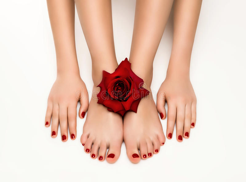 Piękny manicure i pedicure z różą fotografia royalty free