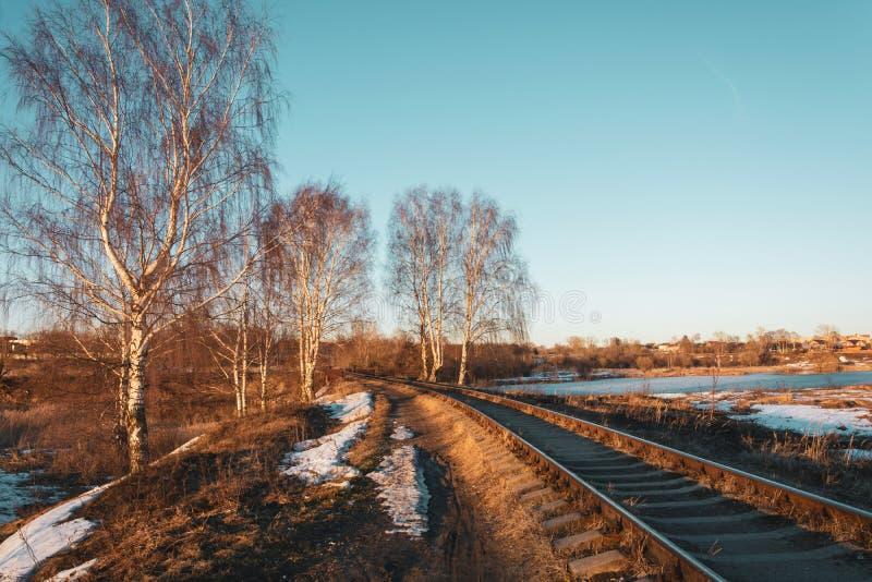 Piękny Marzec krajobraz z brzozami i kolej opuszcza w odległość obrazy royalty free