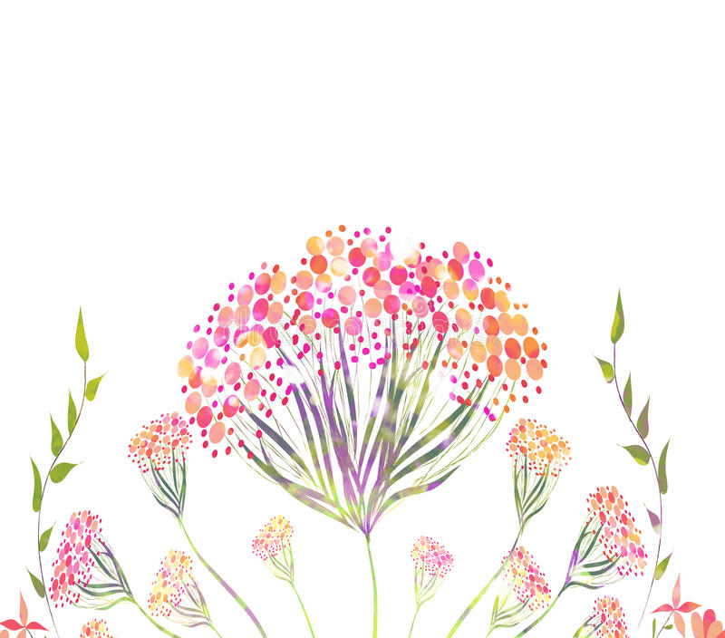 Piękny menchia kwiat, akwarela obraz royalty ilustracja