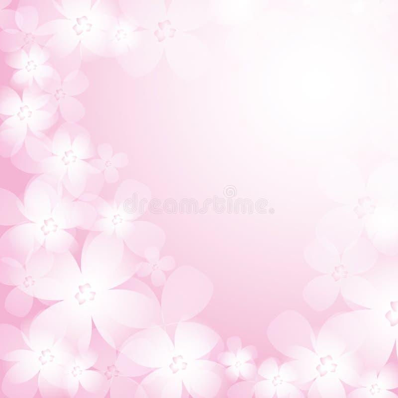 Piękny menchia kwiatu tło. ilustracji