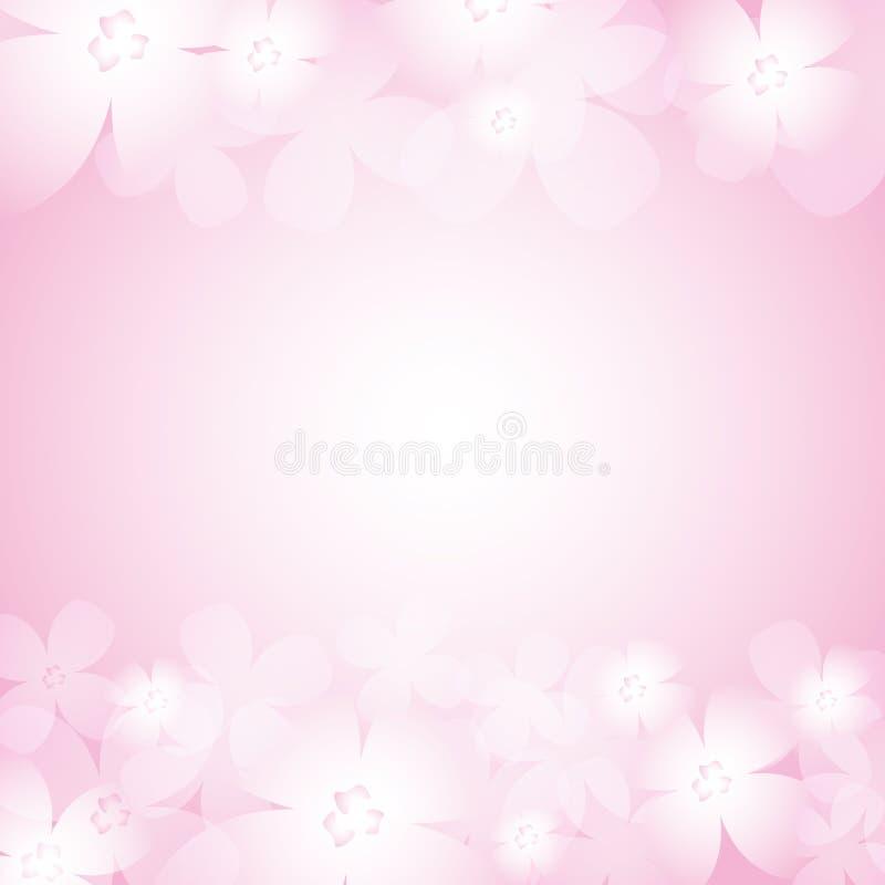 Piękny menchia kwiatu tło ilustracja wektor