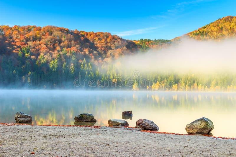 Piękny mgłowy jesień krajobraz, świętego Anna jezioro, Transylvania, Rumunia fotografia stock