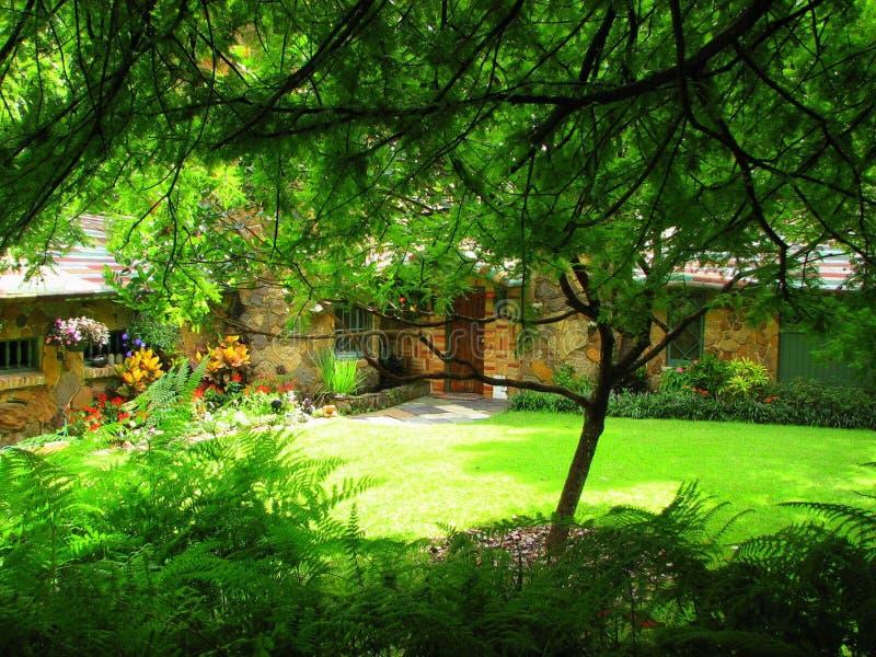 piękny miejsce fotografia royalty free