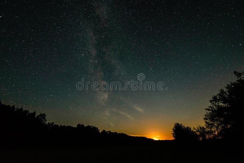 Piękny milky sposobu galaxy na sylwetce drzewo i nocnym niebie zdjęcia stock