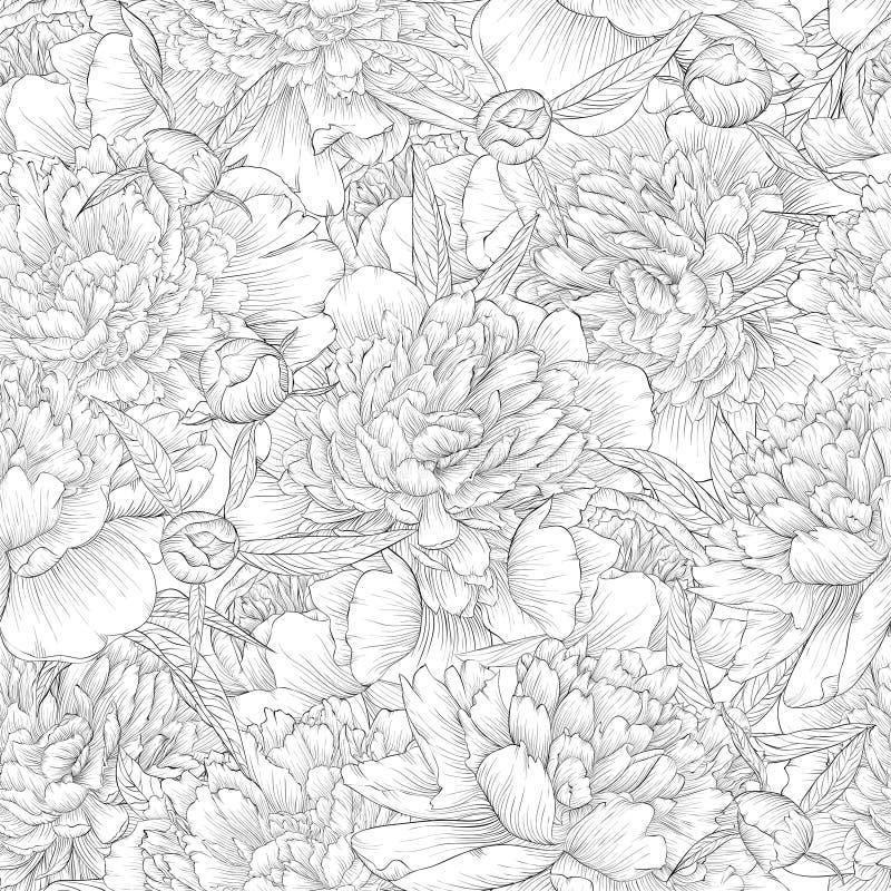 Piękny monochromatyczny czarny i biały bezszwowy tło peonie z liśćmi i pączkiem ilustracja wektor