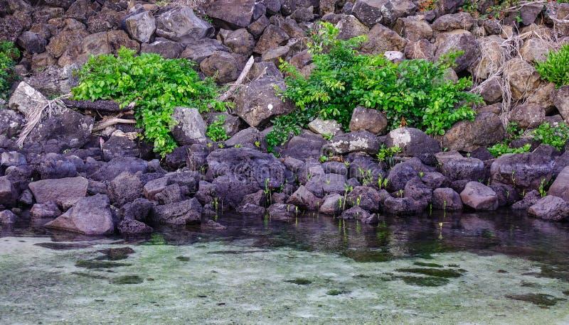 Piękny morze w Uroczystym Baie, Mauritius fotografia stock