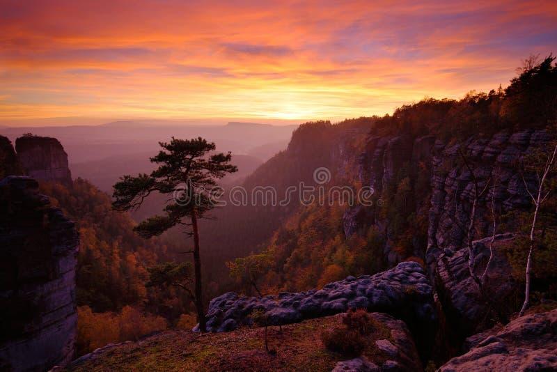 Piękny mroczny zmierzchu krajobraz Evening mnie skalisty wzgórze z dużą sosną Słońce z świstem i pomarańcze niebem Wieczór słońce fotografia royalty free
