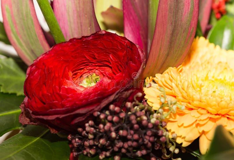 Piękny multicolor bukiet 2 fotografia stock