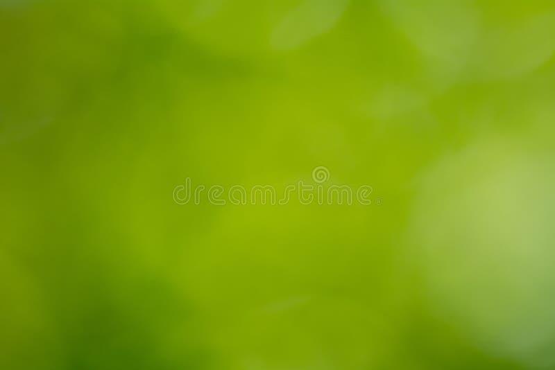 Piękny naturalny głęboki - zielony gradientowy tło fotografia royalty free