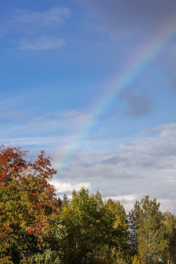 Piękny niebieskie niebo z tęczą w Finlandia zdjęcia royalty free