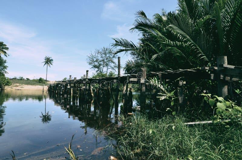 Piękny odbicie na wodnym drewnianym moscie, kokosowym drzewie, namorzynowym drzewie i boja unosić się, obrazy royalty free
