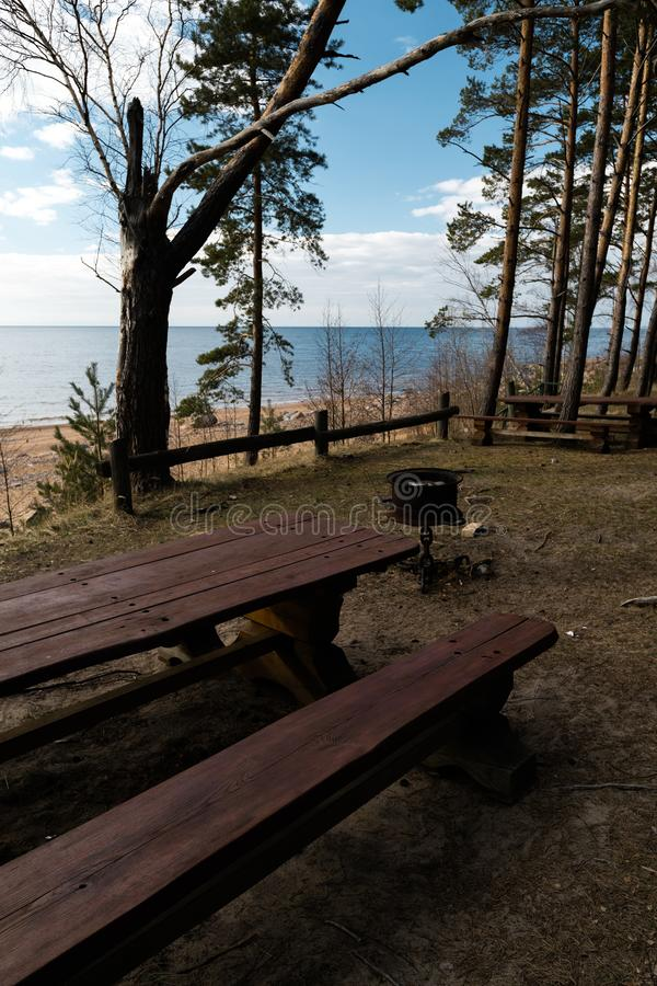 Piękny odległy pinkinu i campingu punkt blisko morza bałtyckiego w sosnowym lesie z głazem wyrzucać na brzeg w tle - obrazy royalty free
