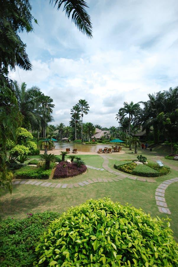 piękny ogród zdjęcia royalty free