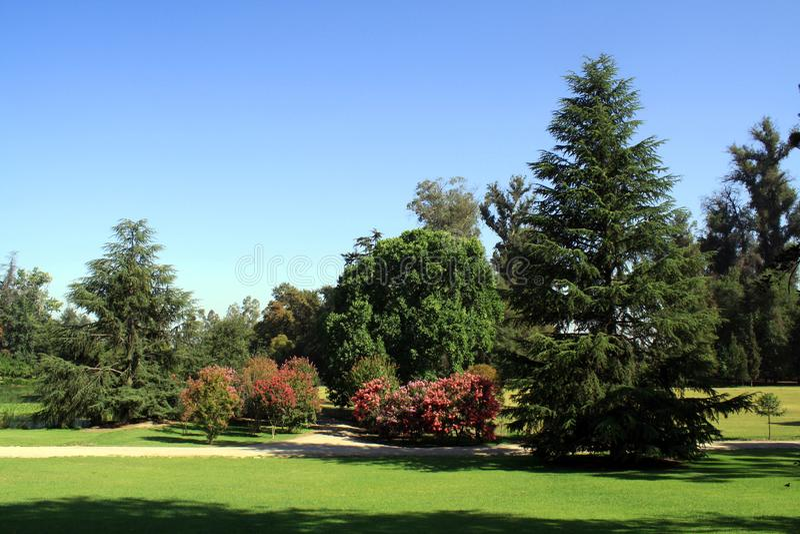 Piękny ogród, Chile obrazy royalty free
