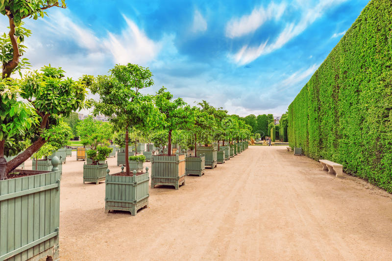 Piękny ogród w Sławnym pałac Versailles (górska chata de Ve obrazy stock
