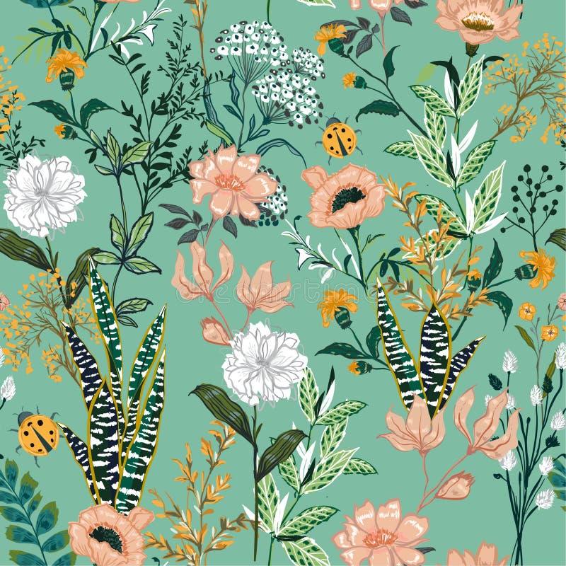 Piękny ogrodowy kwitnienie kwiat w wiele kwiecisty sezonowym jakby ilustracji