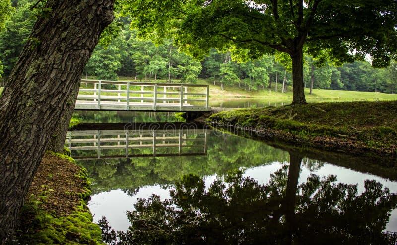 Piękny Ohio strumienia Lasowy krajobraz zdjęcie royalty free