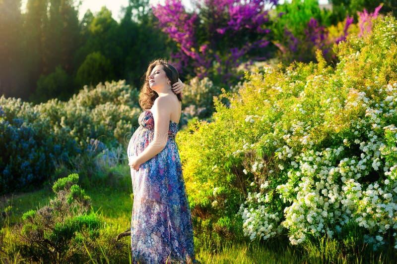 Piękny oszałamiająco kobieta w ciąży w zadziwiającej lato sukni Pojęcie brzemienność, zdrowie, rodzina zdjęcie royalty free