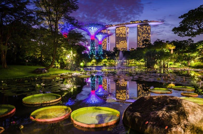 Piękny półmrok przy ogródem zatoką obrazy royalty free
