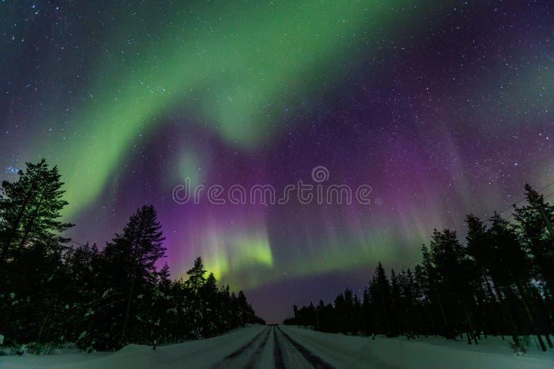 Piękny Północnych świateł aurora borealis w nocnym niebie nad zimy Lapland krajobrazem, Finlandia, Scandinavia obrazy royalty free