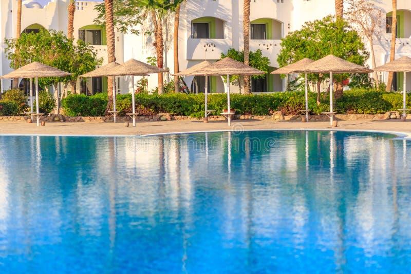 Piękny pływacki basen luksusowy hotel i drzewka palmowe, zdjęcie stock