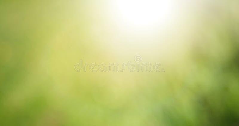 Piękny Panoramiczny zamazany natury lata zieleni tło obraz royalty free