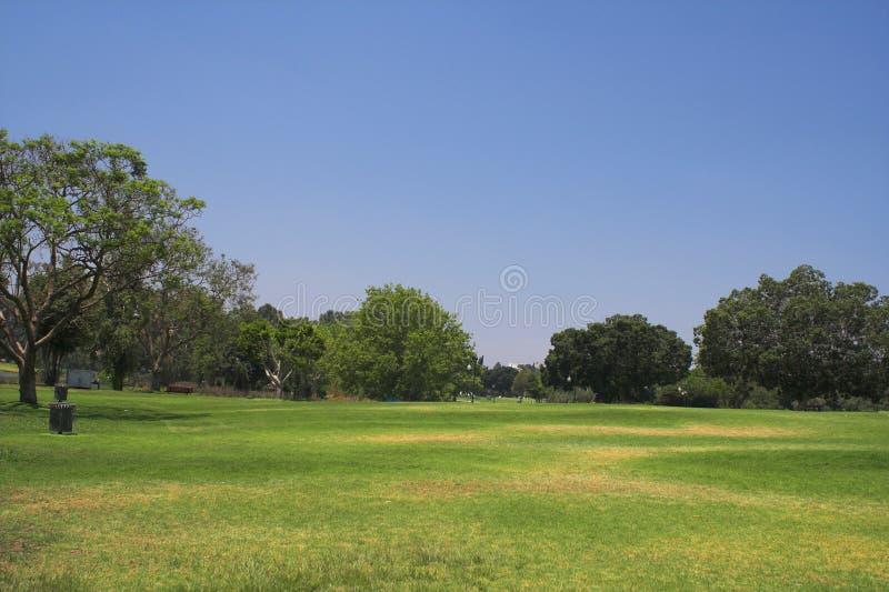 piękny park lato obraz stock