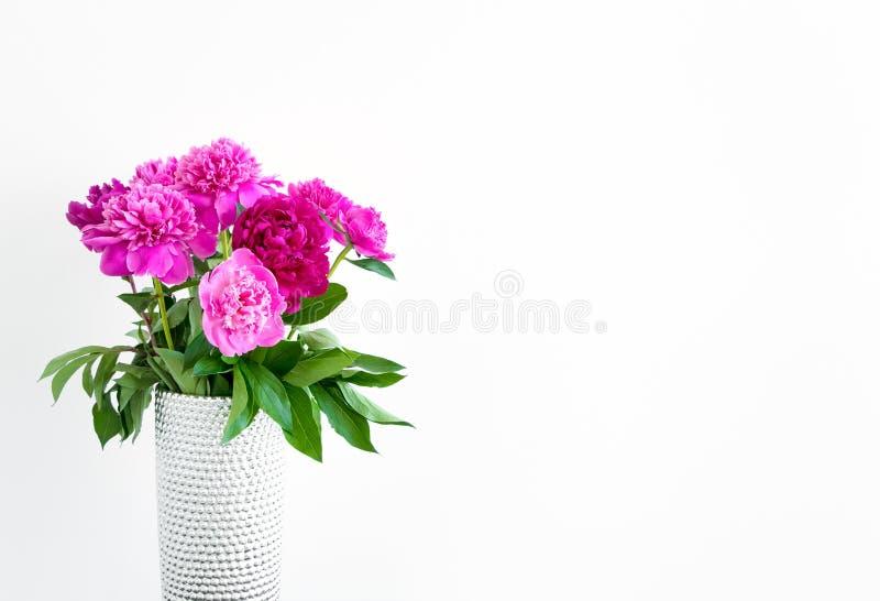 Piękny peonia bukiet Minimalistyczny salowy skład przeciw biel ścianie zdjęcia royalty free