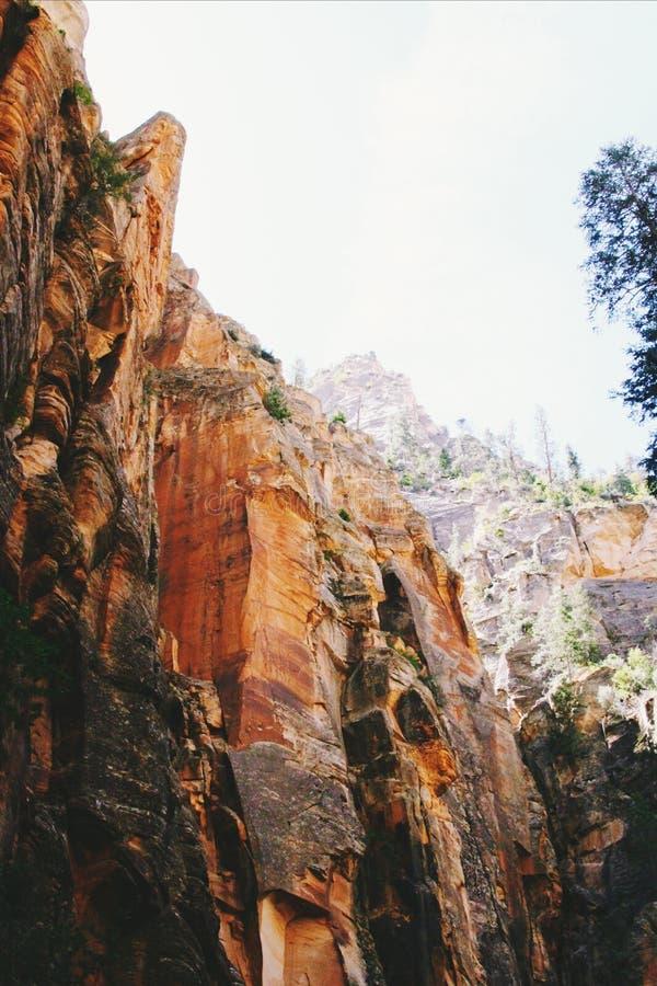 Piękny pionowo niski kąt strzelał rockowe formacje w Zion parku narodowym, usa fotografia stock