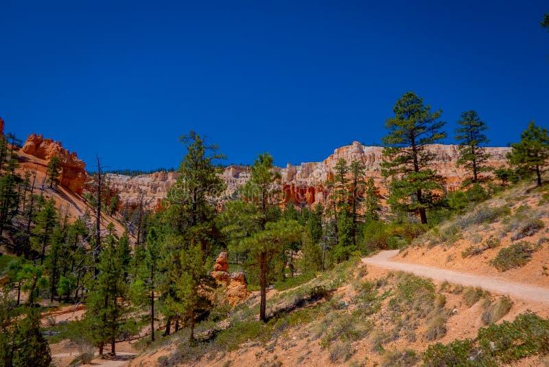 Piękny plenerowy widok pinyon sosny Bryka jaru lasowy park narodowy Utah zdjęcie stock
