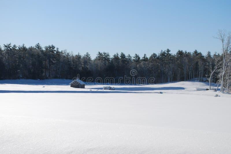 Piękny pole wypełniający z śniegiem w Massachusetts obraz royalty free