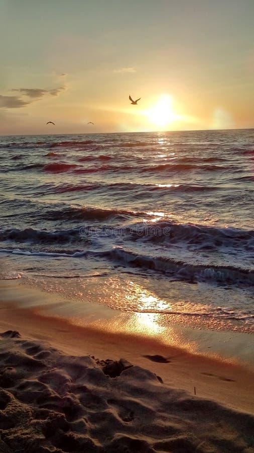 Piękny Polski morze obrazy royalty free