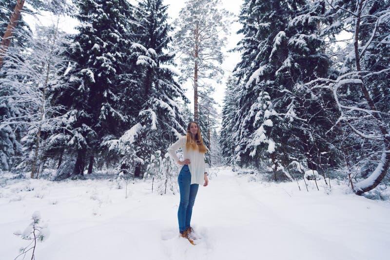 Piękny portret dziewczyna w zima lesie obraz stock