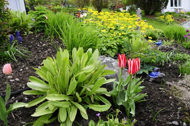 Piękny przodu ogród obrazy stock