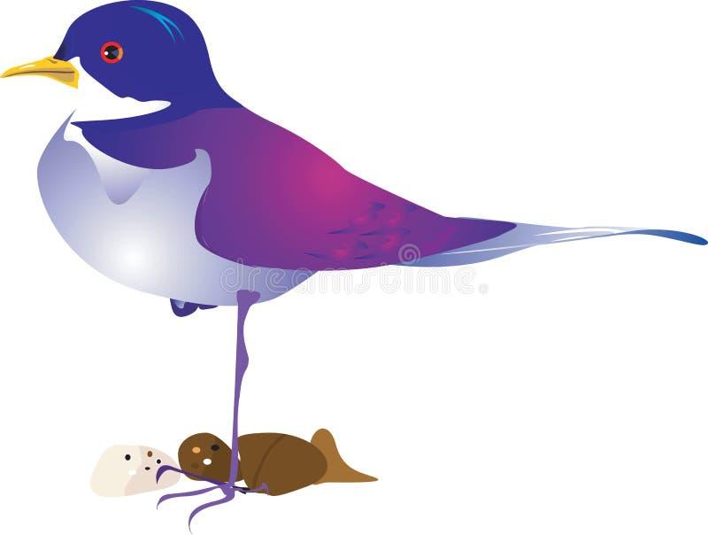 Piękny ptak ilustracji