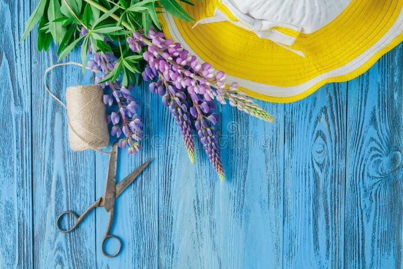 Piękny purpurowy lupine z liśćmi, nożycami i konopie niciami, zdjęcia stock