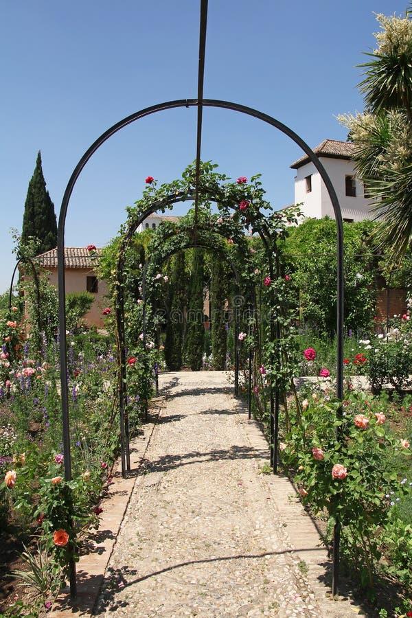 Piękny różany Alhambra ogród w Granada, Hiszpania obrazy stock