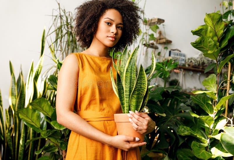 Piękny rośliny wlaściciel sklepu obraz stock