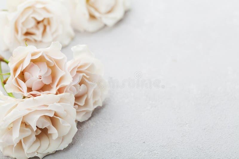 Piękny rocznik wzrastał kwiaty na szarość kamienia stole rabatowy kwiecisty Pastelowy kolor fotografia royalty free