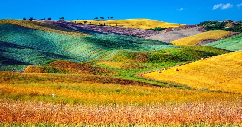 Piękny rolniczy krajobraz obrazy royalty free