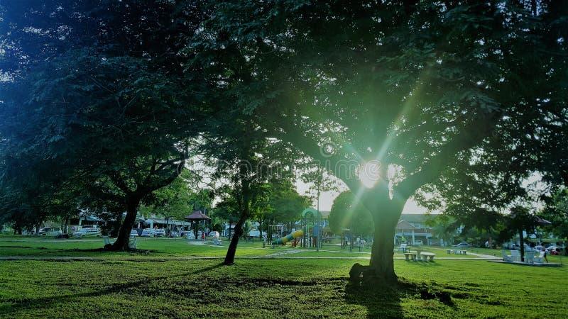 Piękny słoneczny dzień przy plenerowymi parkami zdjęcie stock