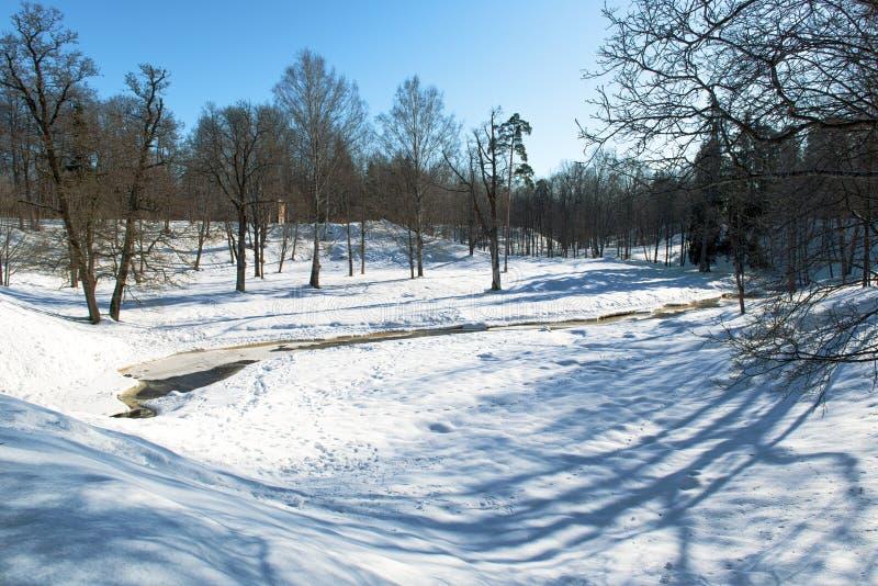Piękny słoneczny dzień w parku. obrazy royalty free