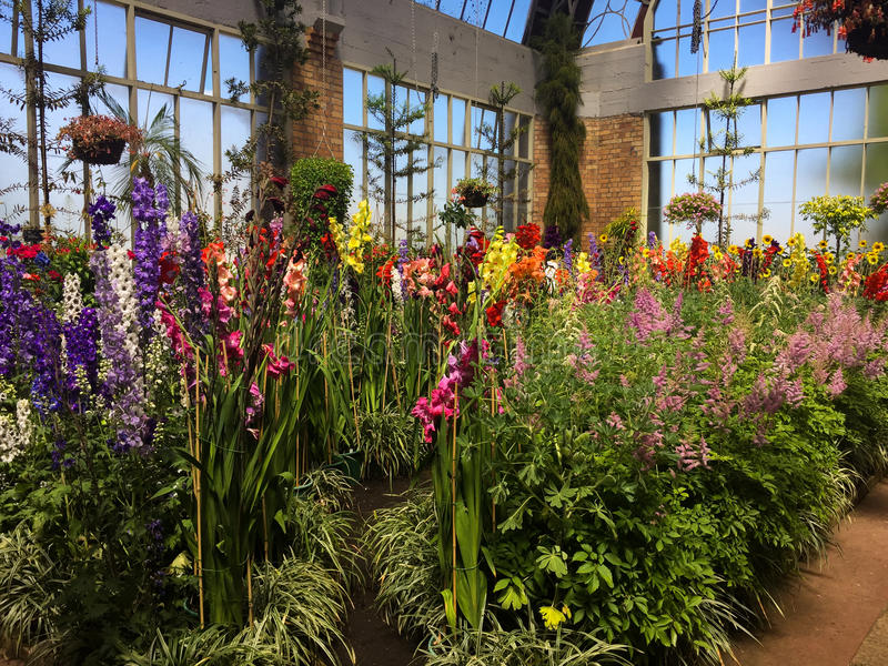 Piękny salowy ogród zdjęcie royalty free